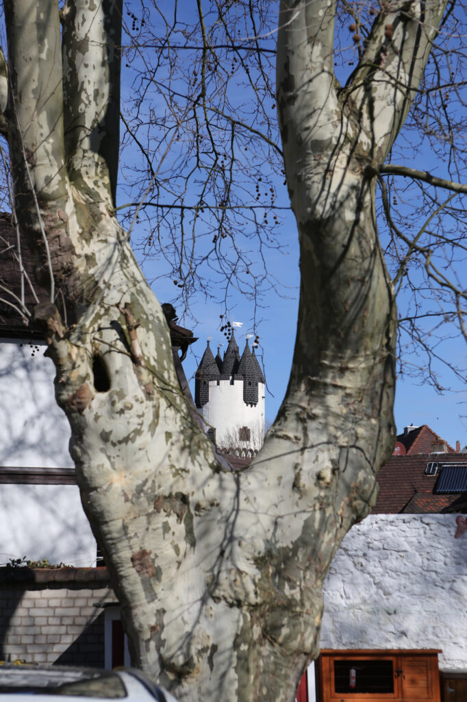 Ungewohnter Blick auf das Staanemer Schloss. Auch die Nachbarn benennt Herbert Peper in seinem Gedicht. Bild: beko